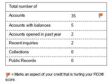 Credit score red flag